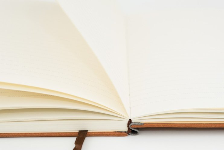 Lemone Notebook Review lay flat