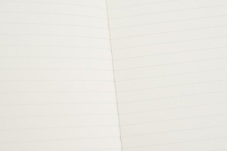 Lemone Notebook Review line pattern