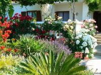 Landscape Design Ideas - The Mediterranean Garden | Founterior