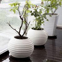 Contemporary Floor Vase Ideas and Examples   Founterior