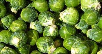 Чем полезна брюссельская капуста