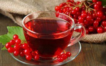 Полезные рецепты из калины: желе и мочёная калина