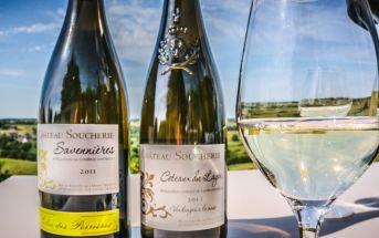 Вина долины Луары: классификация, марки и сорта винограда