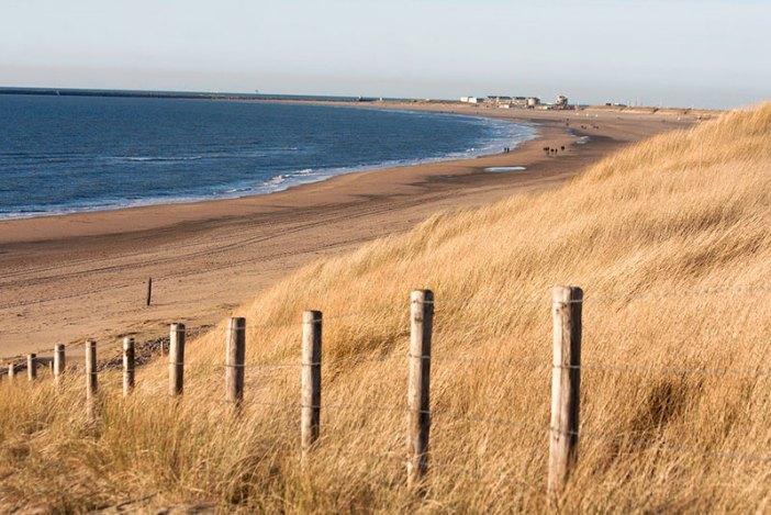 Побережье и дюны Южного Кеннемерланда