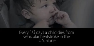One Decision Child Safety Film Vehicular Heat Stroke