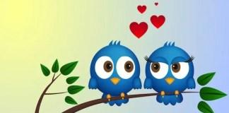Lo scopo dei social media: dare un contatto fisico