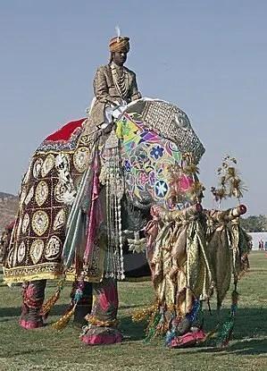 Elefante-Haidt-desiderio