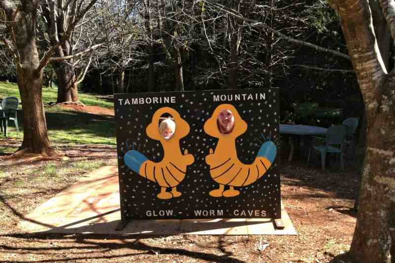 Tambornine Mountain Glow Worm Caves