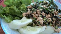 Laos: Lao karp, minced meat with peppermint, spring onions & basil