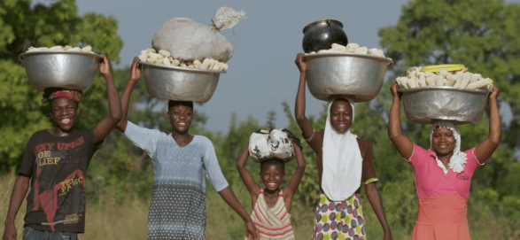 ISSD Africa Creating seed demand