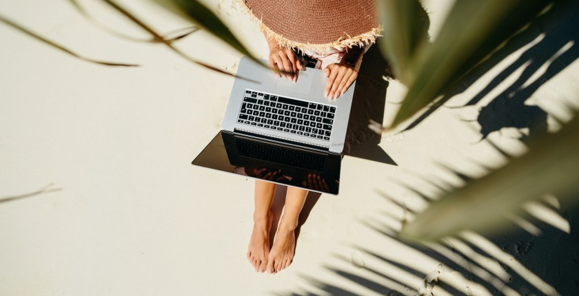 working underneath a palm tree with laptop