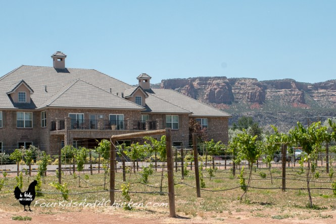 grand junction vineyard