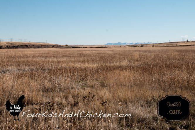 prairie in great falls