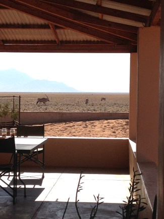the view of gemsbok from the porch