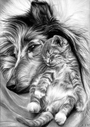easy animal drawings draw