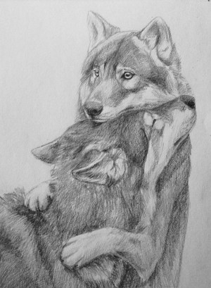 drawings animal easy wolf sketches sketch pencil draw cool hug deviantart drawing dessins wolves animaux