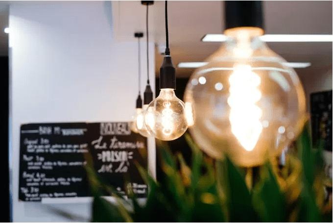 lightbulbPlant.PNG