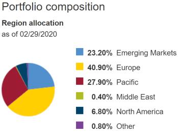 VXUS regional allocation