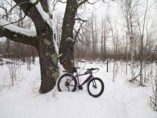 Snowbiking in fresh show 004