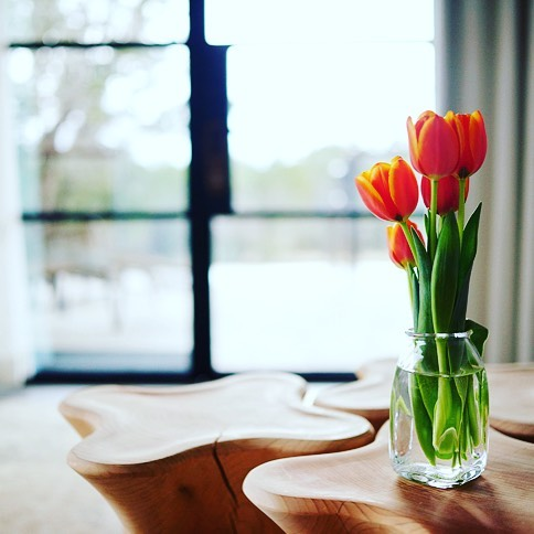 Tulips, beautiful and safe in a room built by @foursquarebuilders