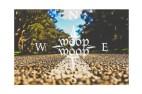 woopwoop1_edited-1