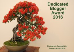 dedicatedblogger1