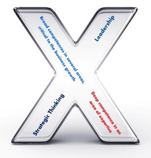 x-shaped-profile