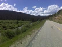 Climbing Willow Creek Pass