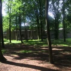 bomen buiten het Kröller Müller