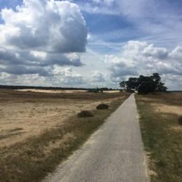 zand langs fietspad, Veluwe