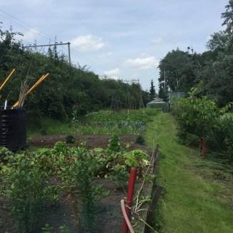 groeten tuin