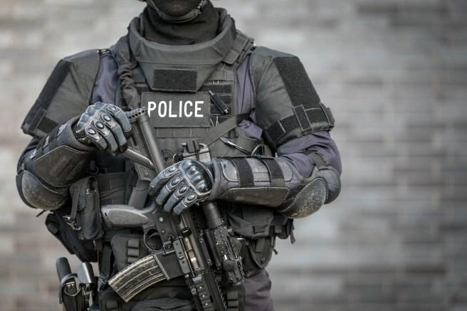Border patrol SWAT teams to help ICE track down undocumented ...