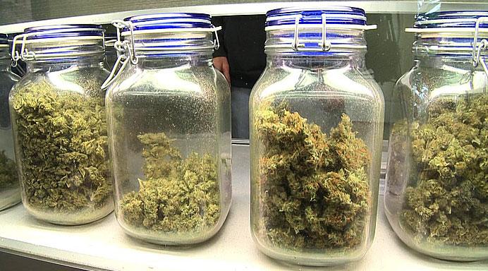 MarijuanaDispensary2