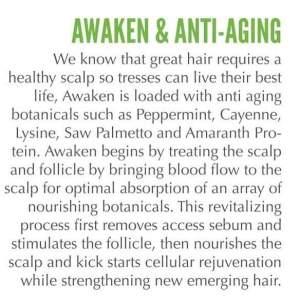 awaken info