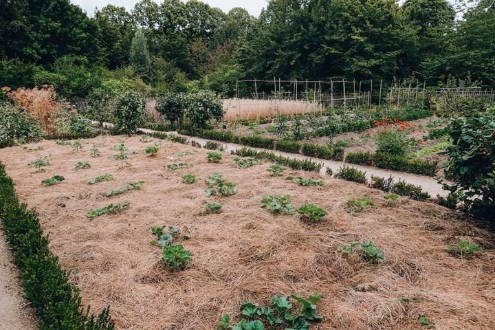 Le potager de Versailles