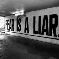 Fear in the World Today - Fear is a Liar Fox Emerson