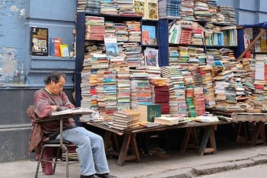 Billions of Books How to write your first book Fox Emerson