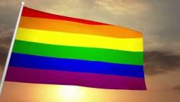 Gay Flag Sexual Identity Fox Emerson