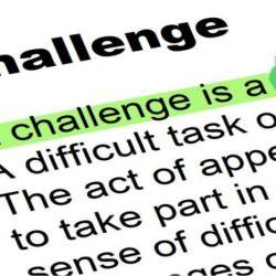The Website Challenge Fox Emerson