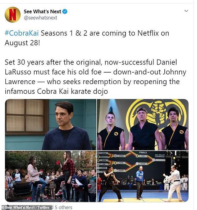 Cobra Kai season 3 official updates