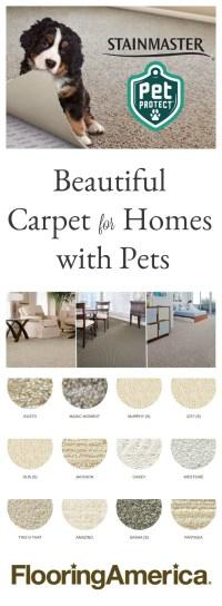 The Best Pet Friendly Carpet Choice - Fox Hollow Cottage