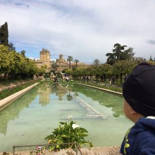 Gardens of Alcazar