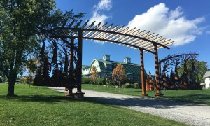 Gate at Fox Run Vineyards by Ironvine Studios