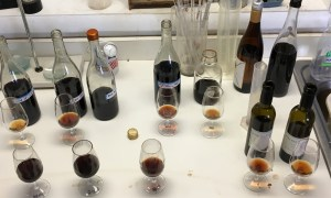 Different versions of Tawny Port in the Fox Run lab