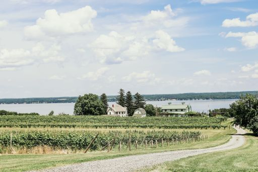 Vineyards, tasting room, barn, house, and the lake at Fox Run
