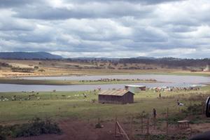 Watering place, Kenya