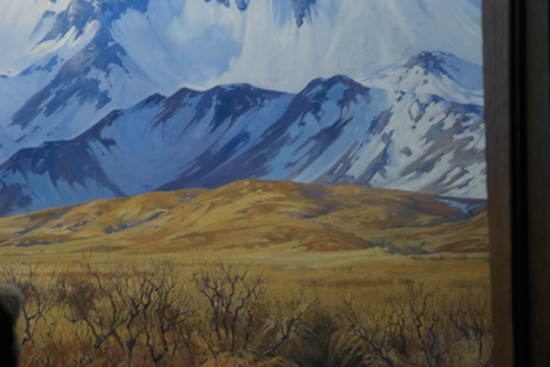 Alaskan brown bear, background diorama detail