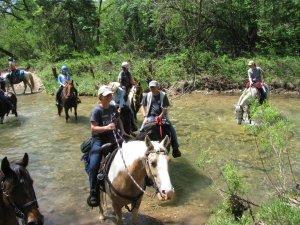 MFTHBA National Trail Ride - Show and Celebration Rides @ MFTHBA World Headquarters