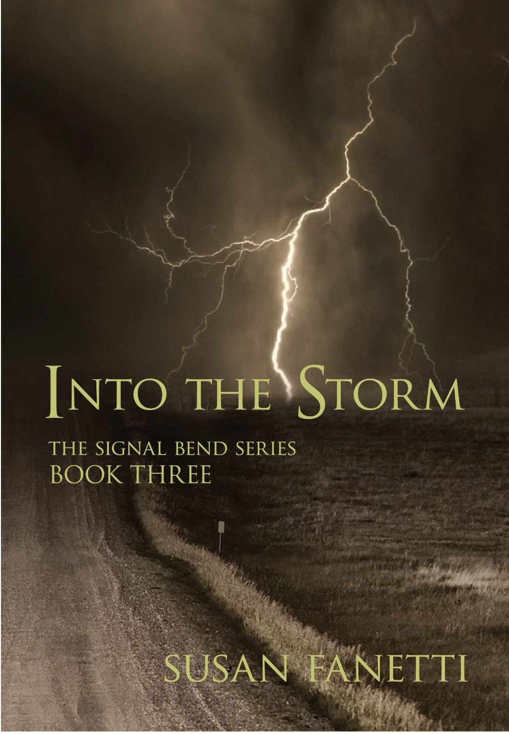 Into the Storm Book Cover