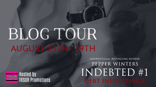 indebted tour banner BLOG TOUR BANNER